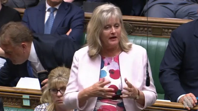 Anne Main MP speaking in the House of Commons, September 2019