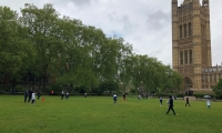 Anne Main hosts MPs v Street Children cricket match.